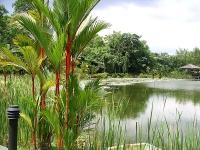 Singapore Botanic Gardens © Velela