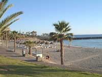 Playa de las Americas, Tenerife