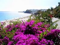 Beach on Fuerteventura © Yoshi