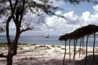 Bongoyo Island, Tanzania © Sherwood