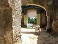 Mtoni Palace Ruins, Zanzibar © Jonathan Stonehouse