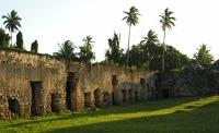 Maruhubi and Mtoni Palace Ruins