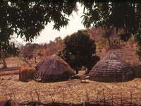 Huts © gbaku