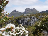 Cradle Mountain © Angela Thomas
