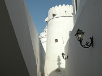 Al Hosn Palace (White Fort)