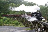 Puffing Billy Railway © David Maciulaitis