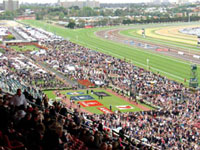 Grandstand view, Melbourne Cup ©
