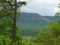 Shenandoah National Park © AlbertHerring, Virginia State Parks staff