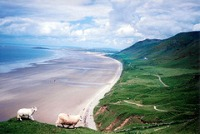 Gower Peninsula © Theodore Scott