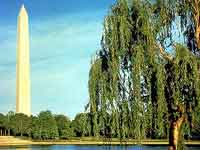 Washington Monument ©