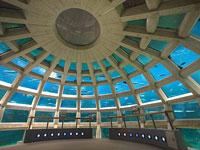 Underwater Dome © Seattle Aquarium