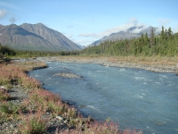Quill Creek, Kluane National Park © Wikibunt