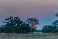 Kafue National Park © Steven dosRemedios