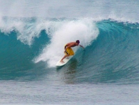 Oahu North Shore Surfer