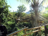 Rope Bridge At River Walk