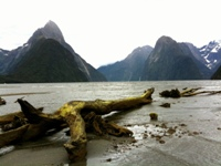 The Milford Track