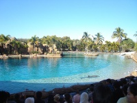 Sea World, Queensland