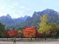 Fall in Seoraksan National Park