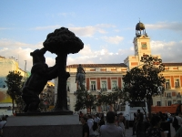 The Bear and the Madrono Tree